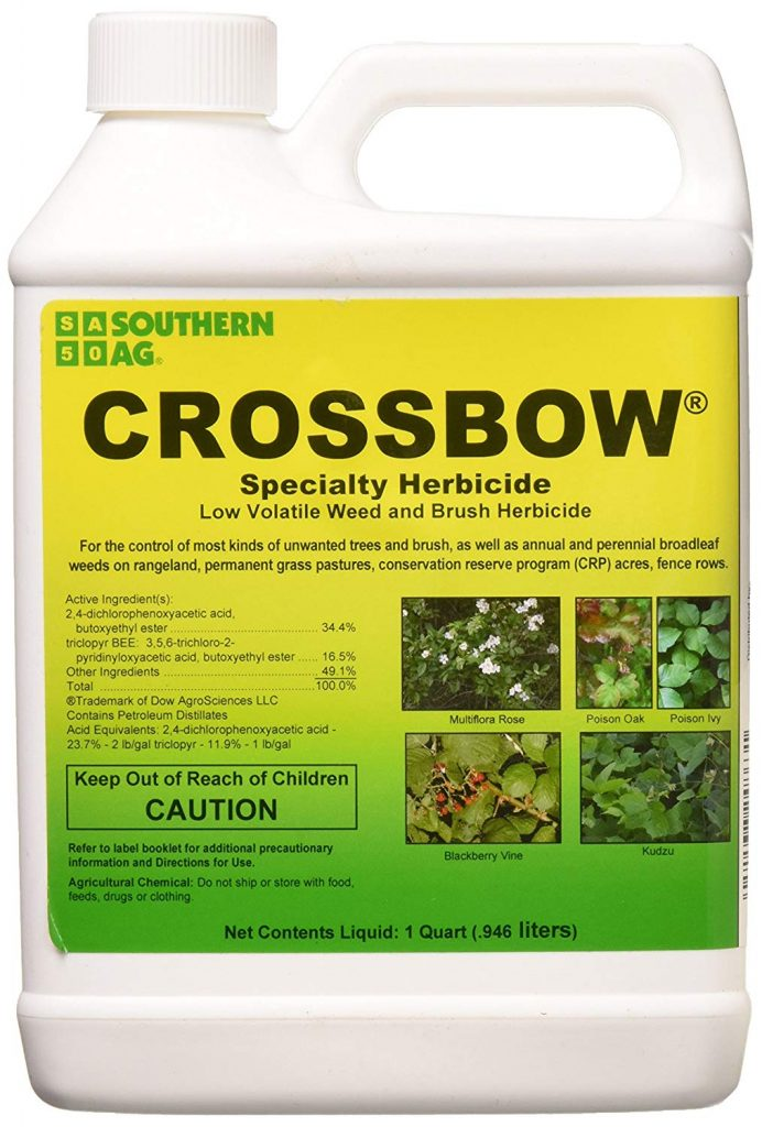 Best Herbicide For Creeping Charlie