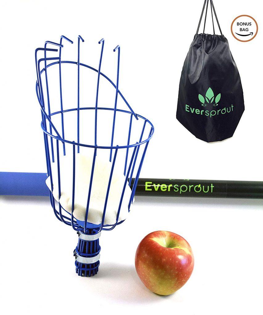 Best Fruit Picker
