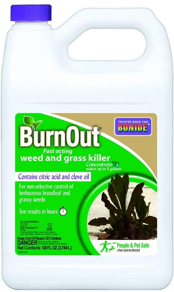 Best organic weed killer