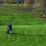 6 Best Lawn Leveling Tool 2020 Ultimate Guide